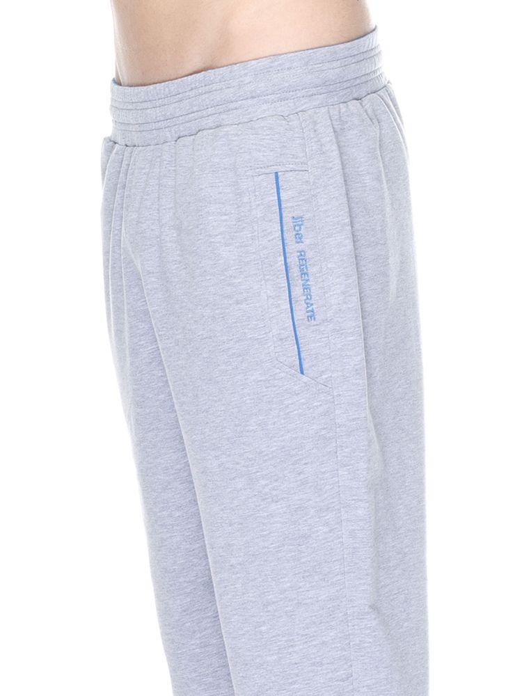 c417ef25 Купить Спортивные штаны Jiber 1752 серый 558 грн (1752-seriy-L ...